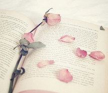 beautiful-blossoms-book-books-flower-218970.jpg