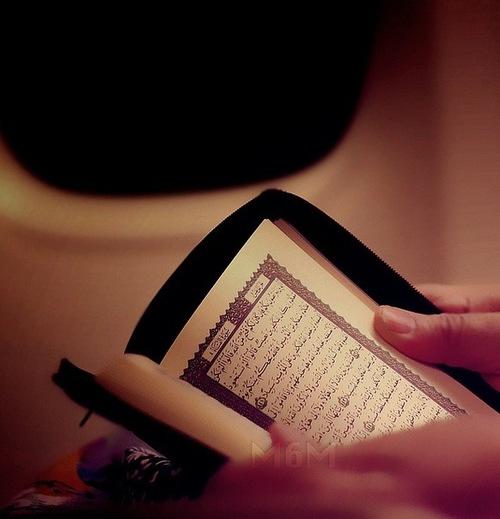 reading qur'an