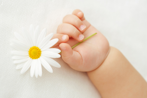 baby hans holding flowers..