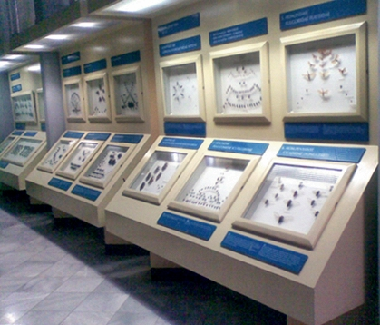 inside the museum 2.jpg