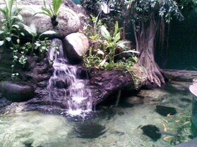 kolam air terjun.jpg
