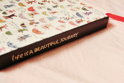book of journey..