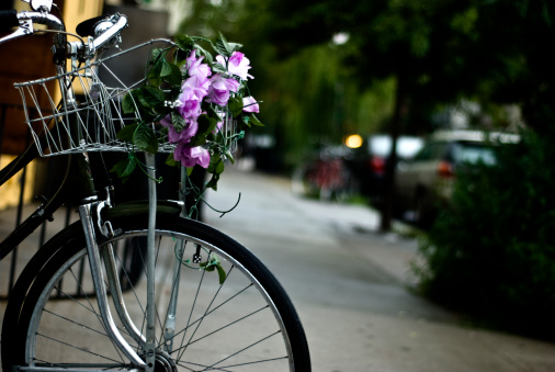 bike and  flowerss