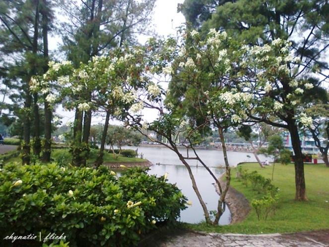 danau taman bunga tmii