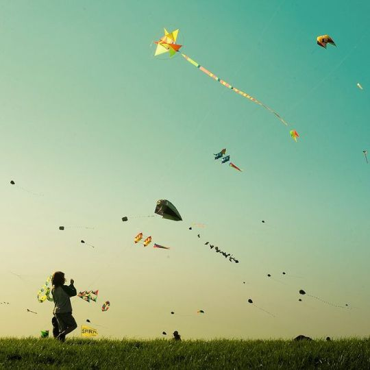 playing kites