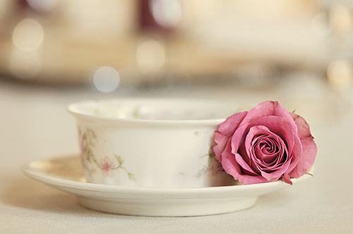 rose and a cup