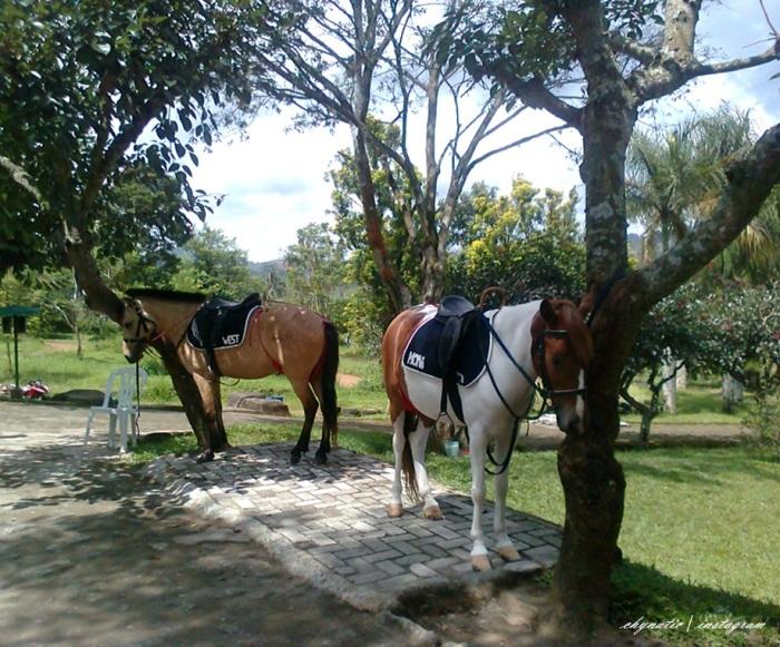 naik kuda!