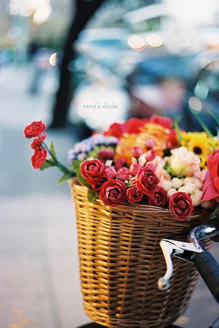 bucket full of flowers
