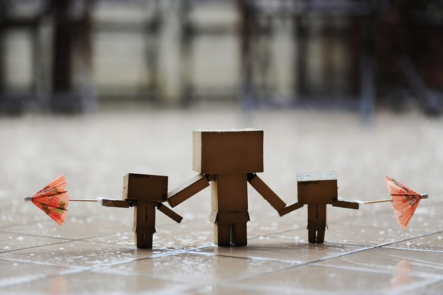 danbo and rain