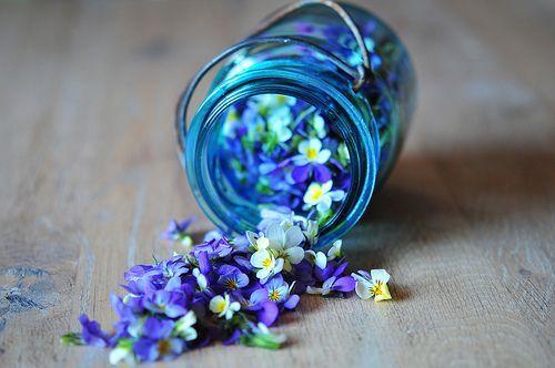 lovely violet jar