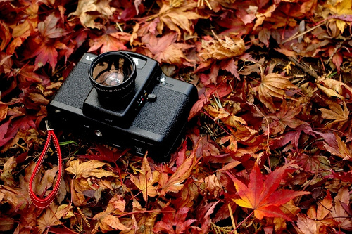camera-in-the-autumn